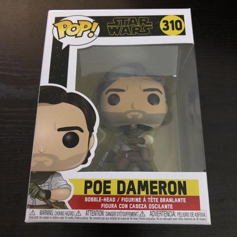 Poe Dameron (Rise of Skywalker)