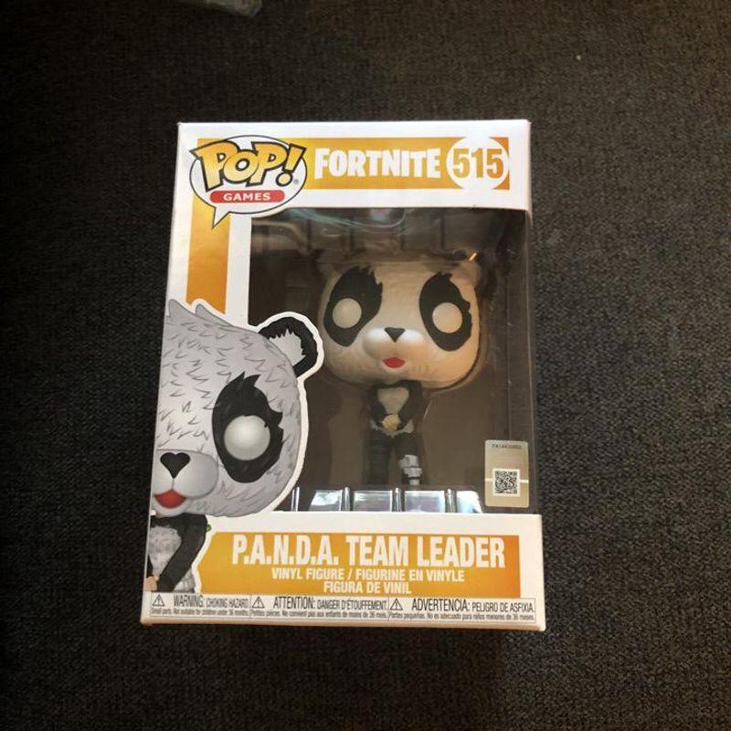 P.A.N.D.A. Team Leader