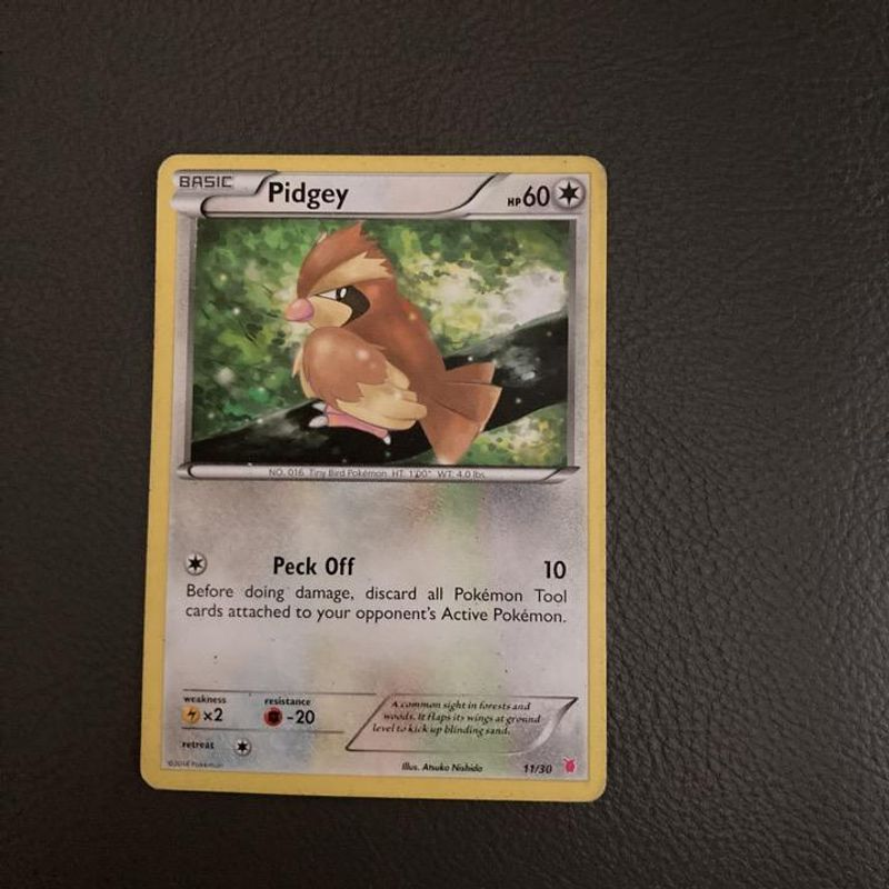 Pidgey - Flashfire