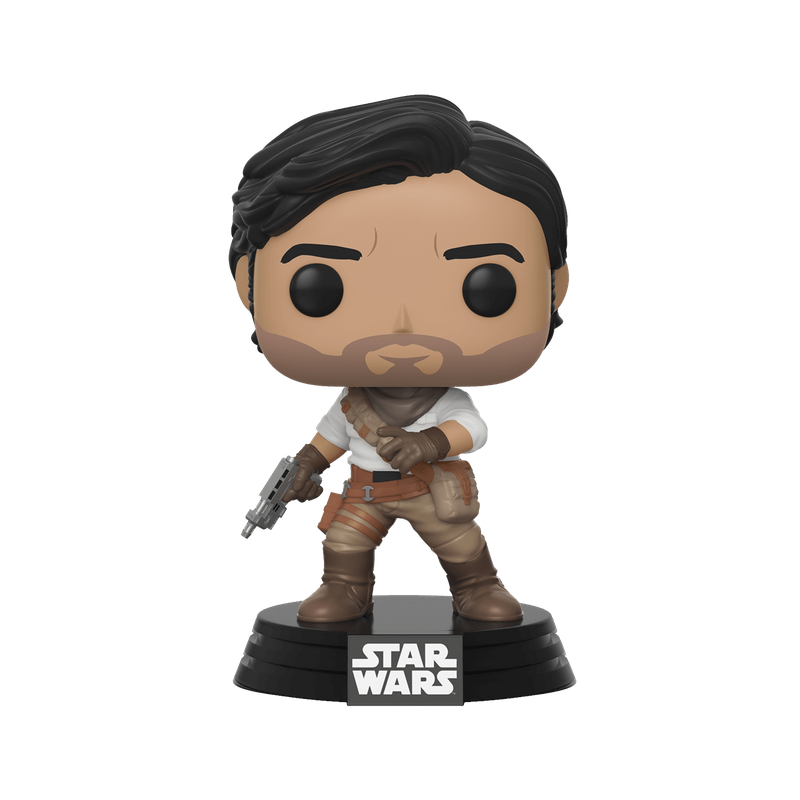 Poe Dameron (Rise of Skywalker)